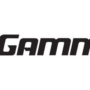 Gamma: Phụ kiện thể thao (Mỹ)